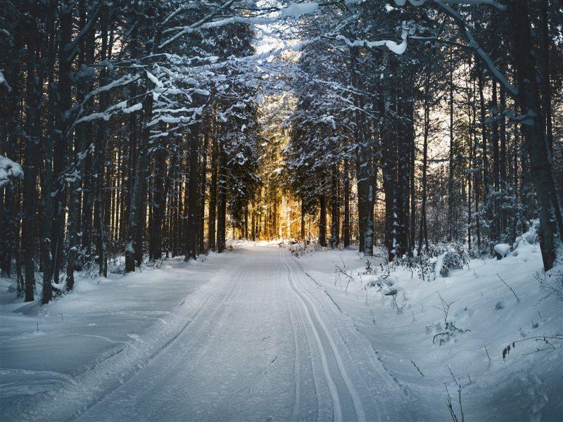 Ferie zimowe BB